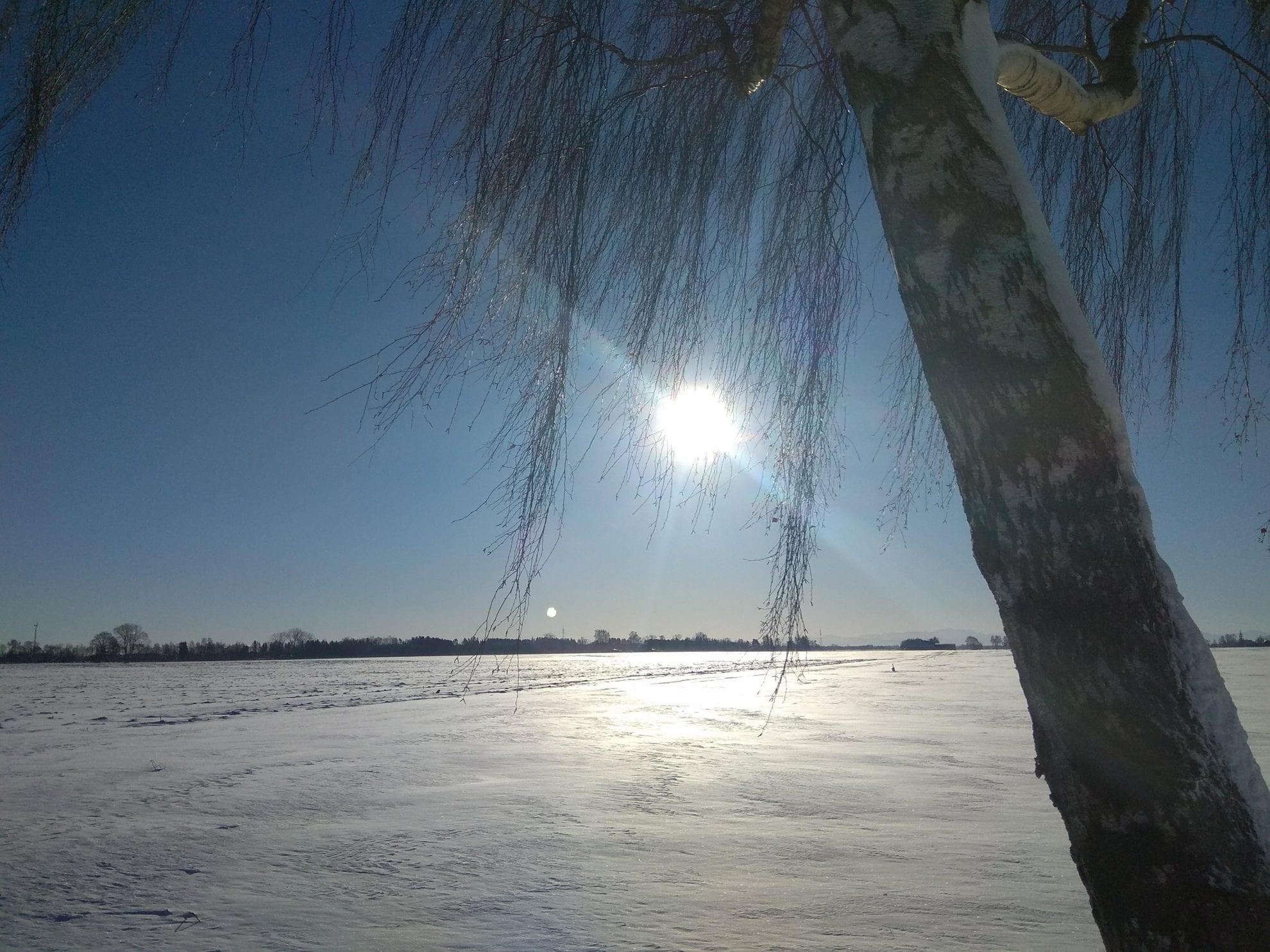 Allgäu, Winter, Sonne, Schnee, Puddingklecks, Bayern