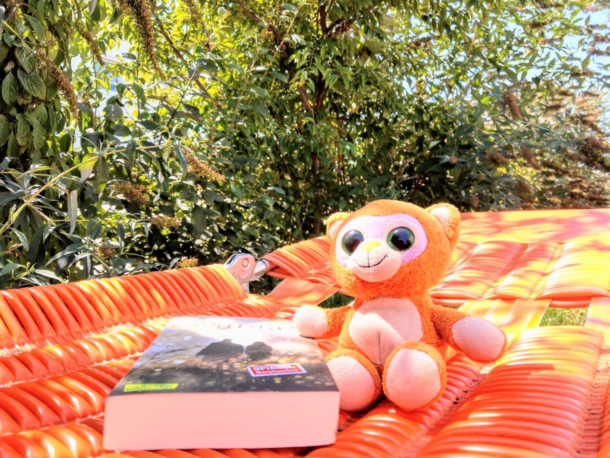 Die Gartenliege ist ein Erbstück und der Jugendroman ist ein Geschenk zu meinem Geburtstag im Juli