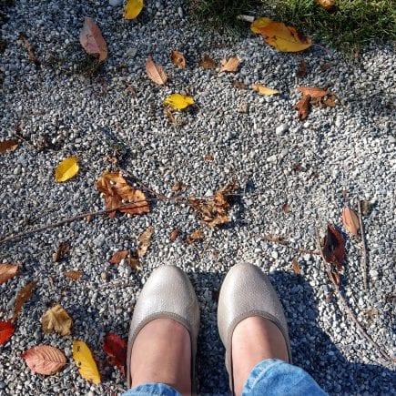 Spielplatzliebe und Schlemmerei: Der Sonntag in Bildern am 14.10.18 im Großfamilienblog Puddingklecks